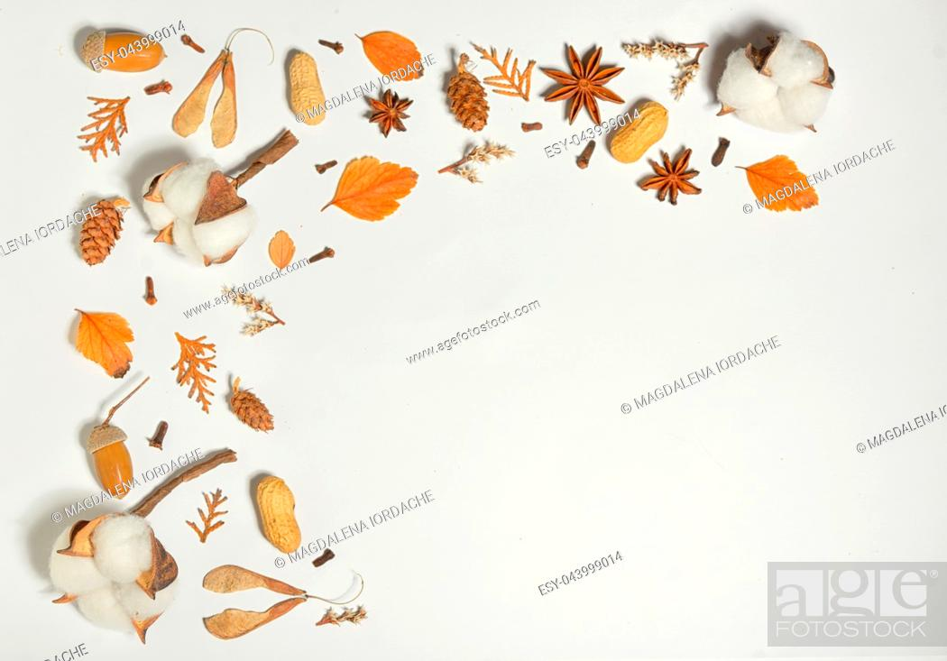 Stock Photo: Autumn frame with cotton buds on white paper.