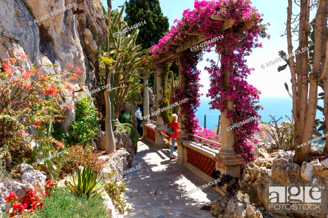 Stock Photo: A beautiful exotic garden in Monaco with a lot of plants.