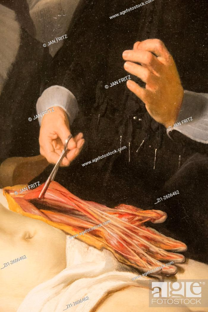 Detail from painting \'the anatomy lesson from dr. Nicolaes Tulp ...