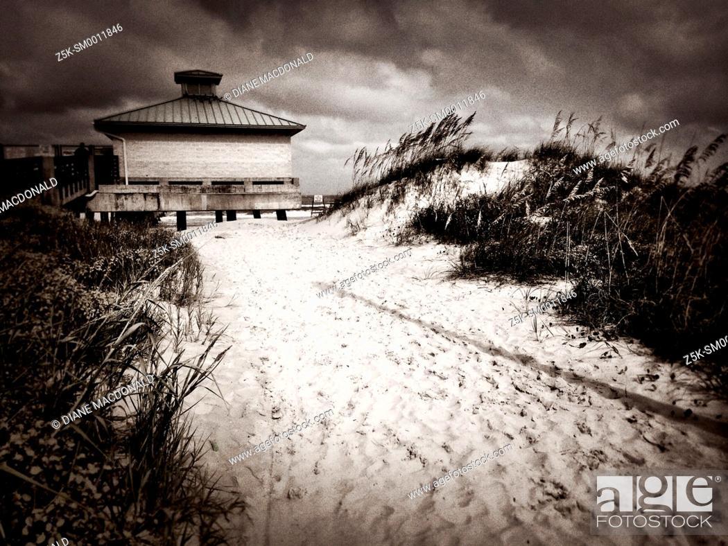 Stock Photo: Sandy path through the sand dunes to the fishing pier, Jacksonville Beach, Florida, USA.