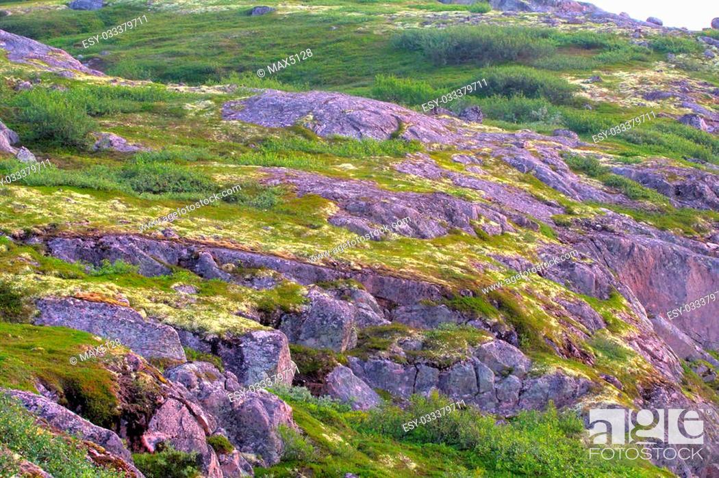 Imagen: mountain tundra near sea coast wonderful polar landscape.