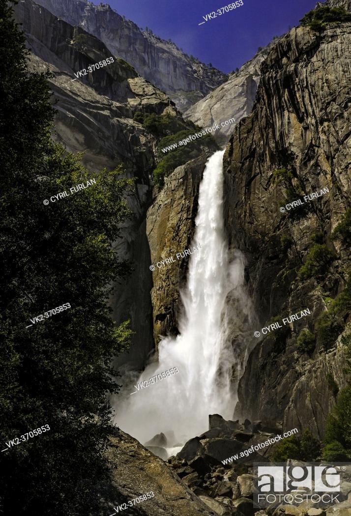 Stock Photo: Lower Yosemite Falls, Spring.