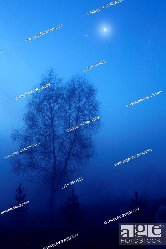 Stock Photo: Russian Federation. Foggy morning in blue tones.