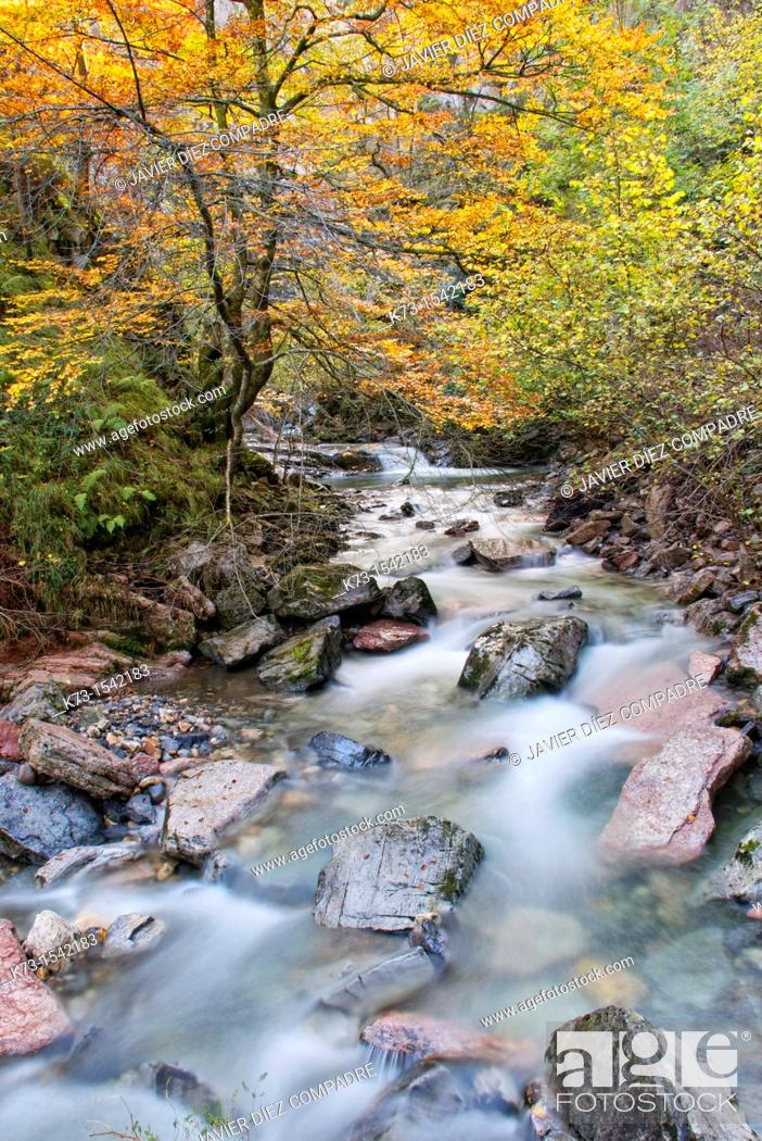 Stock Photo: Route of El Alba. Alba River. Redes Natural Park and Biosphere Reserve. Soto de Agues. Sobrescobio Council. Asturias. Spain.