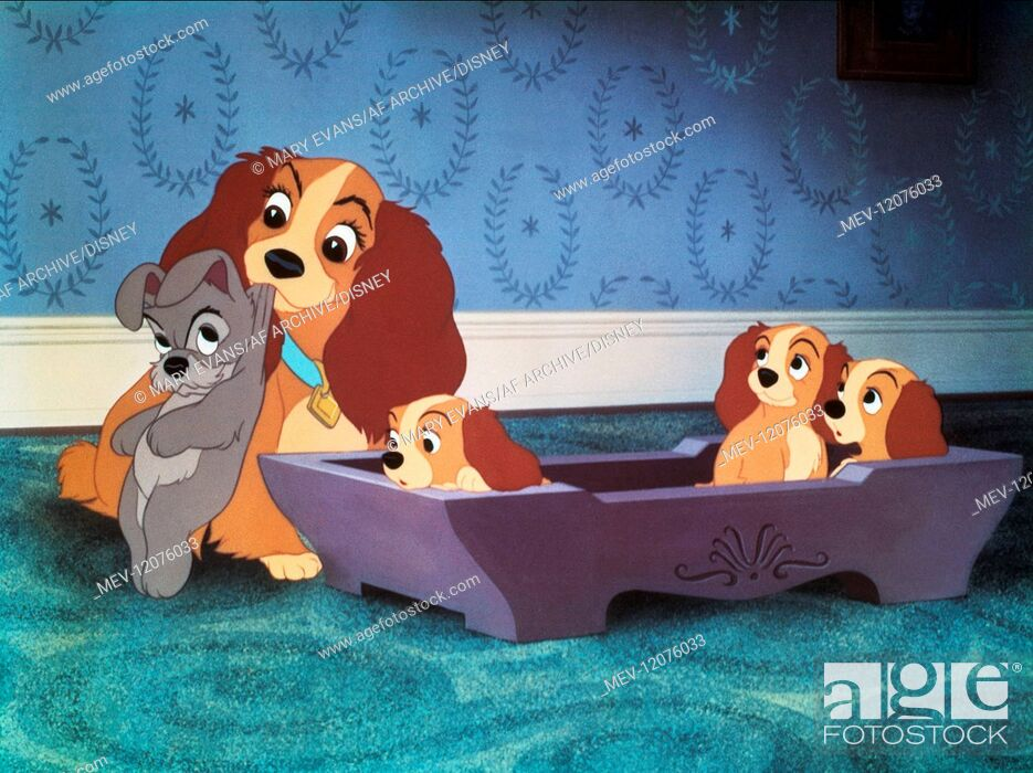 Lady Puppies Film Lady And The Tramp Usa 1955 Regie Clyde Geronimi Wilfred Jackson Stock Photo Picture And Rights Managed Image Pic Mev 12076033 Agefotostock