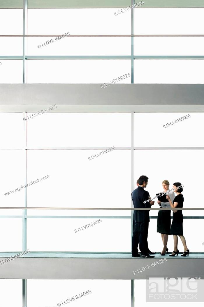 Stock Photo: Group of business colleagues in modern office building.
