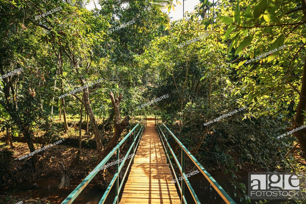 Stock Photo: Goa, India. View Of Small Bridge Surrounded By Tropical Green Vegetation In Sunny Day.