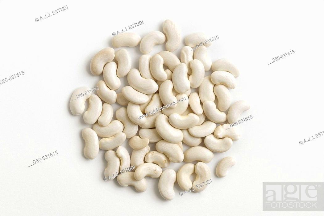 Stock Photo: legume type  on white background.