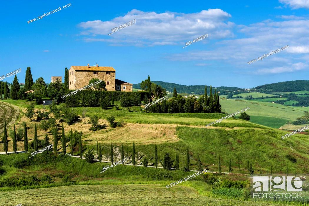 Stock Photo: Typical green Tuscan landscape in Val d'Orcia, farm on hill, fields, trees, cypresses and blue cloudy sky, La Foce, Tuscany, Italy.