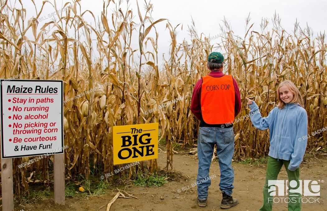 Imagen: Farmington Maine fall activity Corn Maze in field with corn stalks and man in charge with young girl pointing called Corn Cop in Northern New England in October.