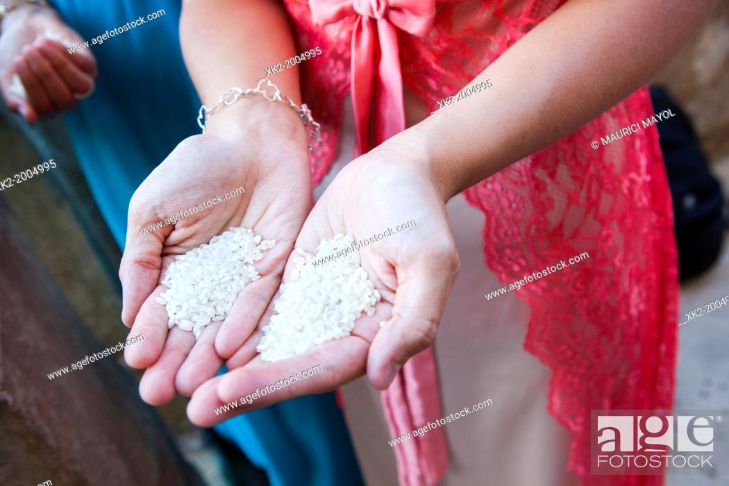 Stock Photo: Close up hands full of rice prepared to be thrown in a wedding.