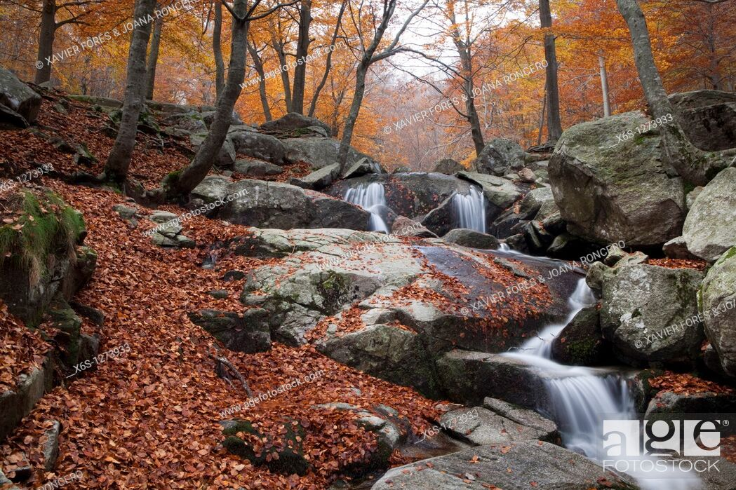 Stock Photo: Santa Fe lake, Natural Park of Montseny, Barcelona, Spain.