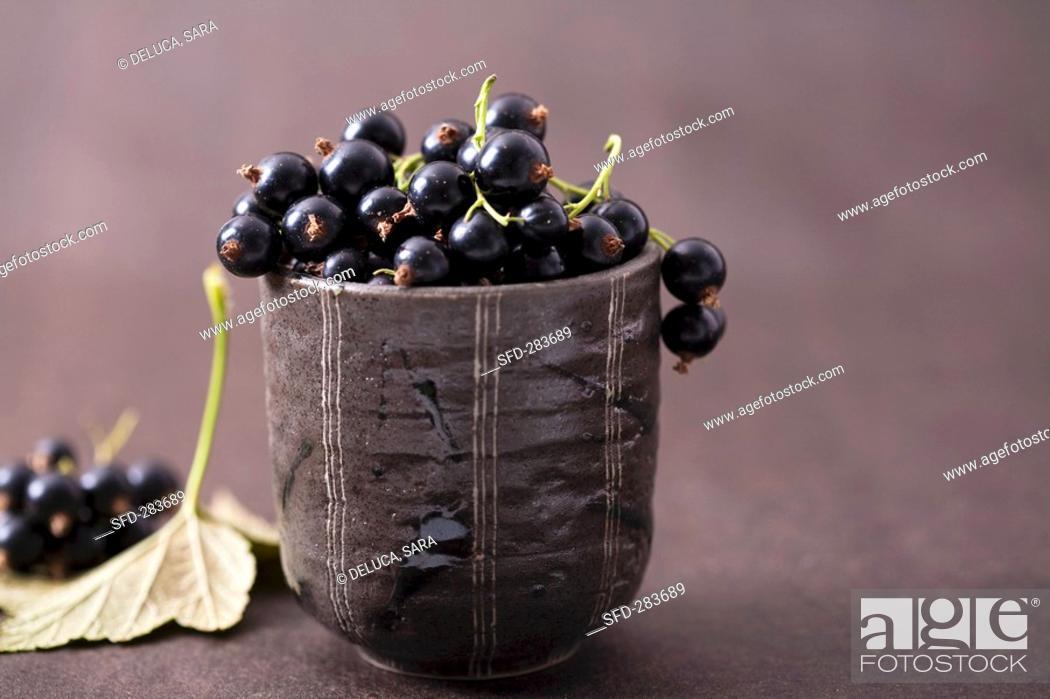 Stock Photo: Blackcurrants.