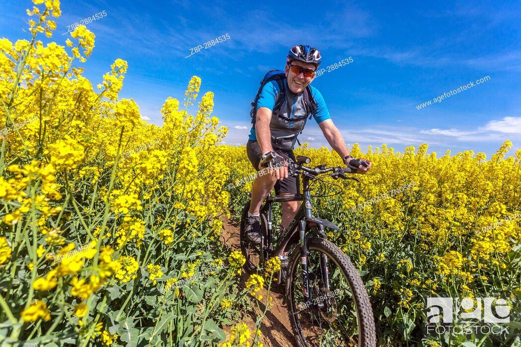 Imagen: A man on a mountain bike rides in a field of flowering rape, Czech Republic.