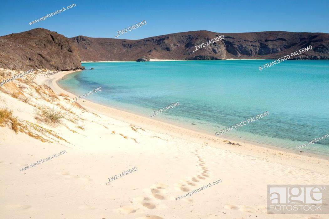 Stock Photo: Balandra beach. La Paz, Baja California Sur. Mexico.