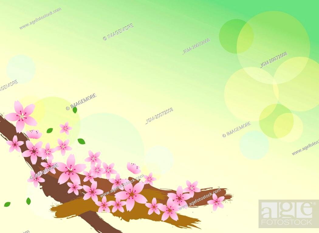 Stock Photo: Illustration and painting of beautiful flowers.