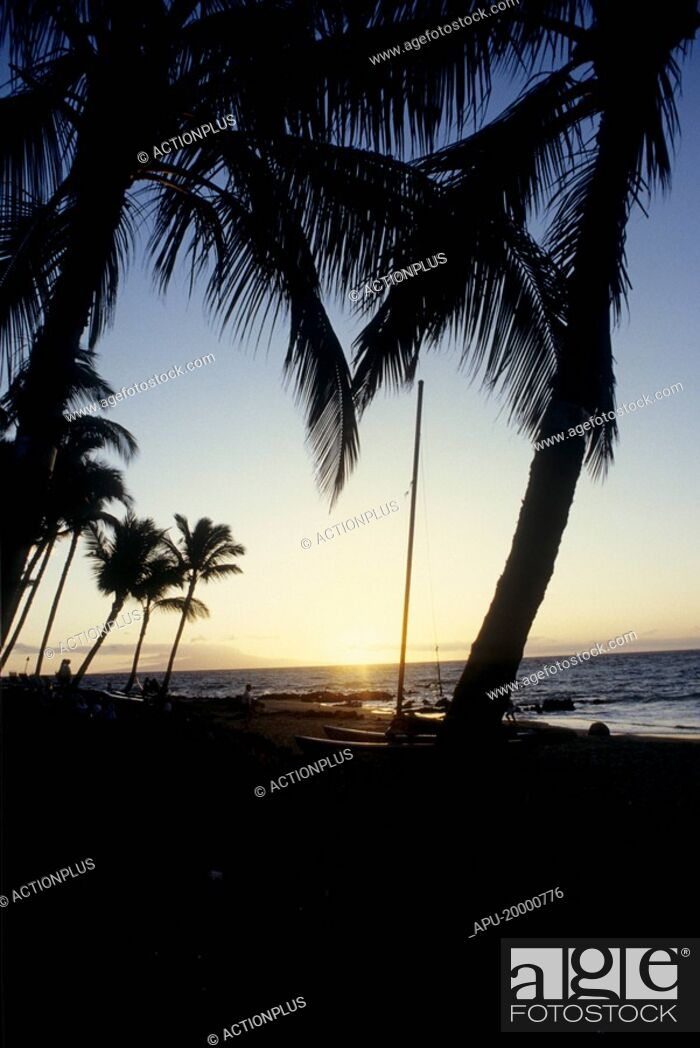 Stock Photo: Silhouette of the beach at sunrise.