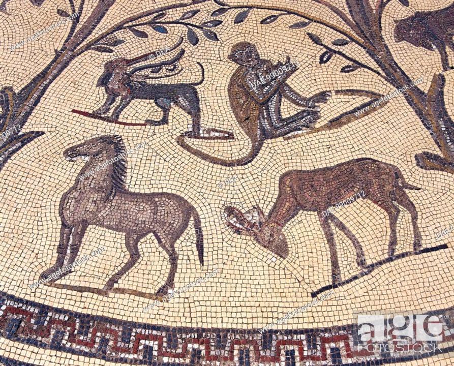 Stock Photo: Morocco - Meknes-El Menzeh - 3rd century A.D. Ancient city of Volubilis, settled by Romans since 1st century A.D. (UNESCO World Heritage List, 1997).