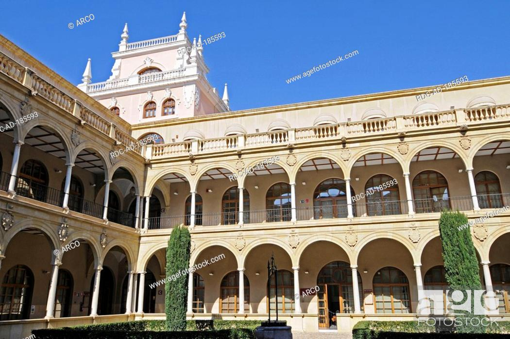 university of murcia spain