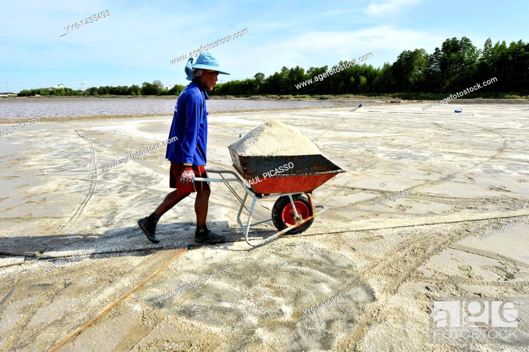 Stock Photo: Salt fields of samut sakhon, labourers harvesting salt, samut sakhon , Thailand.