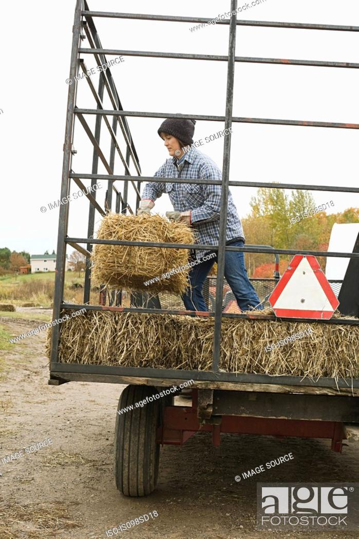 Stock Photo: Farmer and tractor of hay.