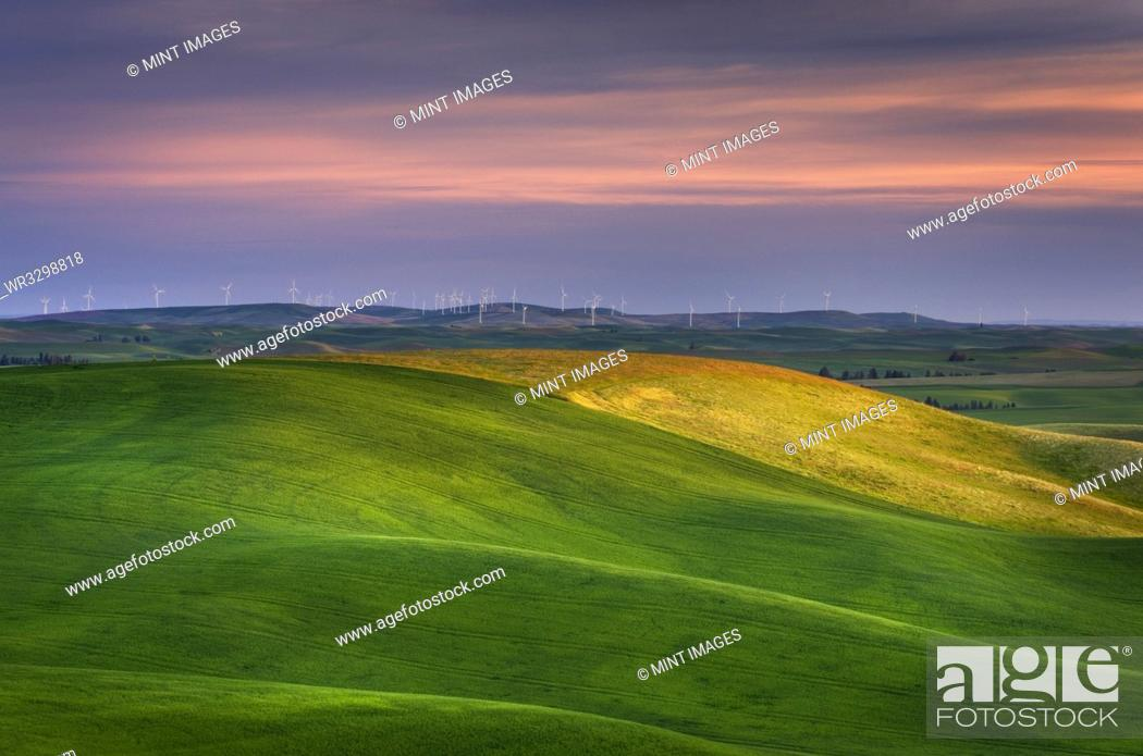 Imagen: Rolling green hills in rural landscape.