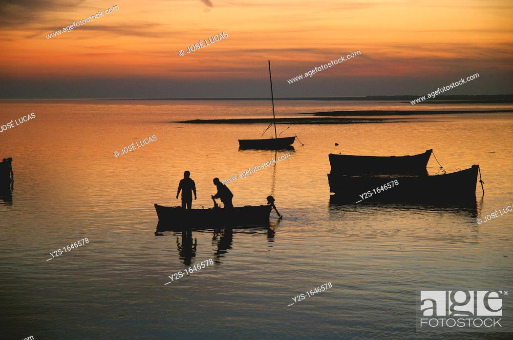 Stock Photo: Fishermen in boat, Cadiz bay Natural Park, Puerto Real, Cadiz-province, Spain.