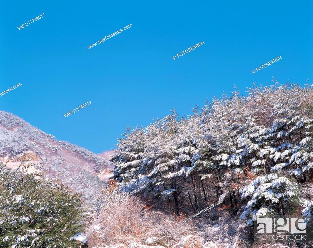 Stock Photo: snowscape, landscape, snow, hill, mountain, winter, nature.