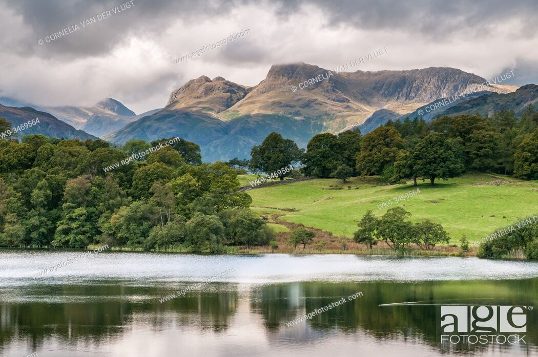 Stock Photo: View of the Landale Pikes in the English Lake District seen from Loughrigg tarn. UK.