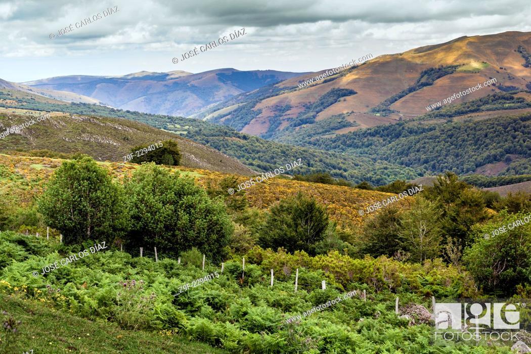 Stock Photo: Valley in Saja-Nansa Natural Park, Cantabria, Spain.