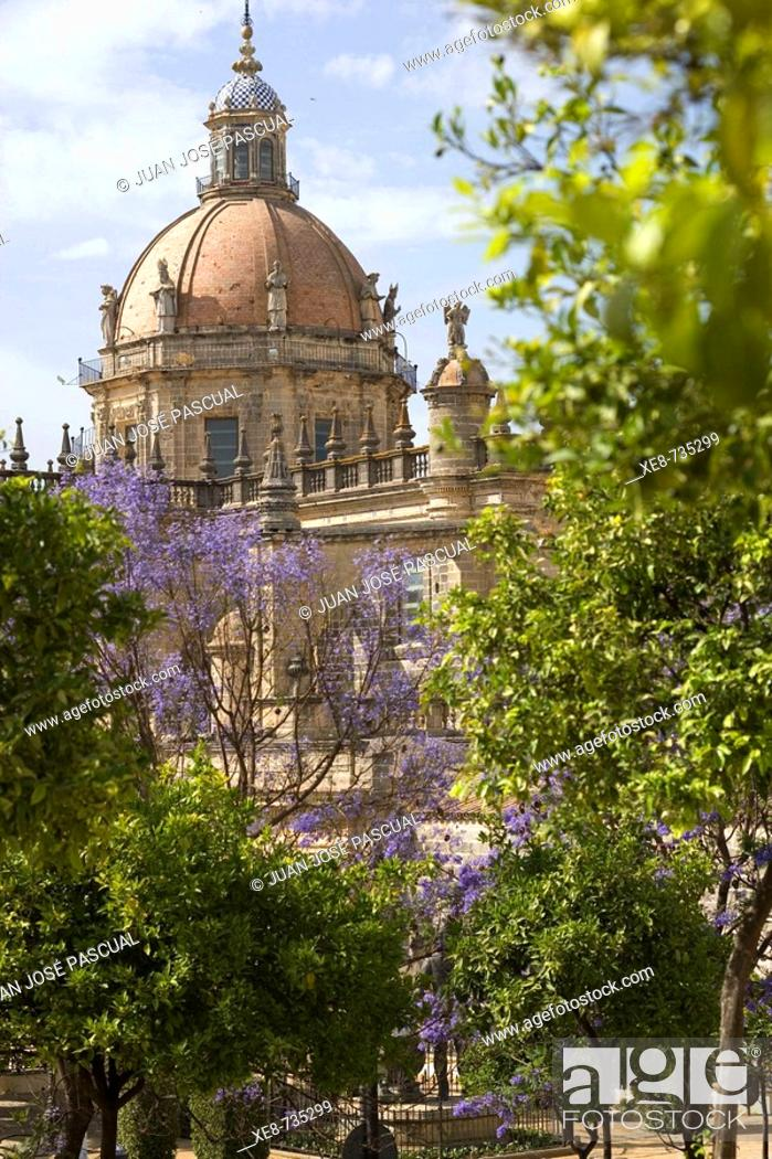 Stock Photo: Cathedral, Jerez de la Frontera. Cadiz province, Andalucia, Spain.