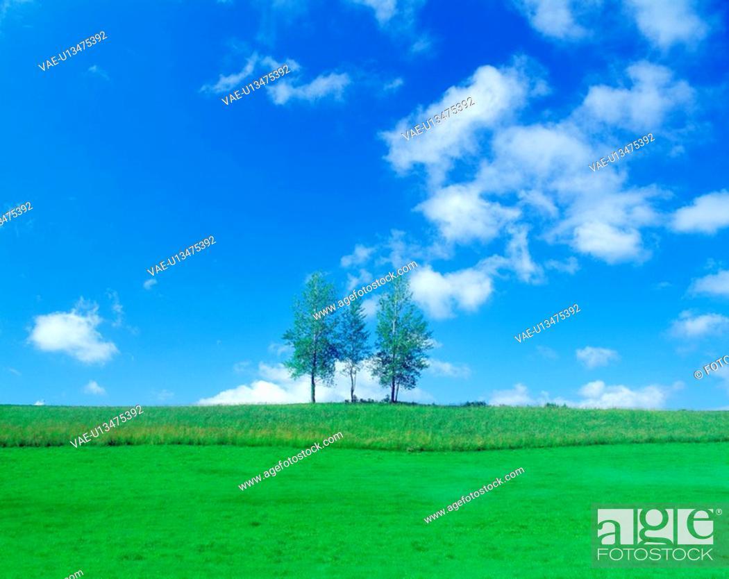 Stock Photo: Blue sky.