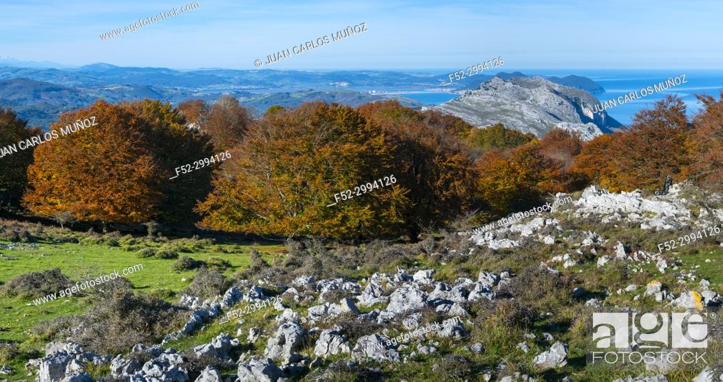 Stock Photo: View of Mount Candina from Mount Cerredo, Beech forest in autumn at Cerredo Mountain, Cantabrian Sea, MONTAÑA ORIENTAL COSTERA MOC, Castro Urdiales, Cantabria.