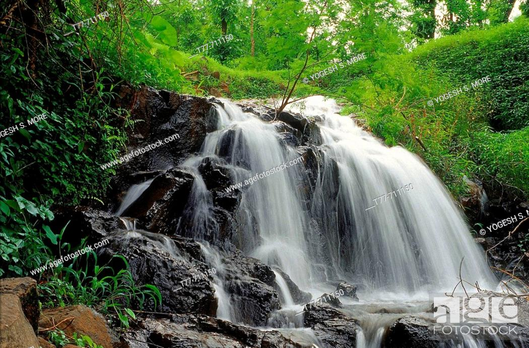 Photo de stock: A waterfall during the monsoon  Ratnagiri, Maharashtra, India.