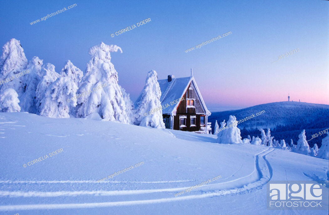 Stock Photo: Snow-covered spruce trees and wood house, Ore Mountains, Saxony, Germany.