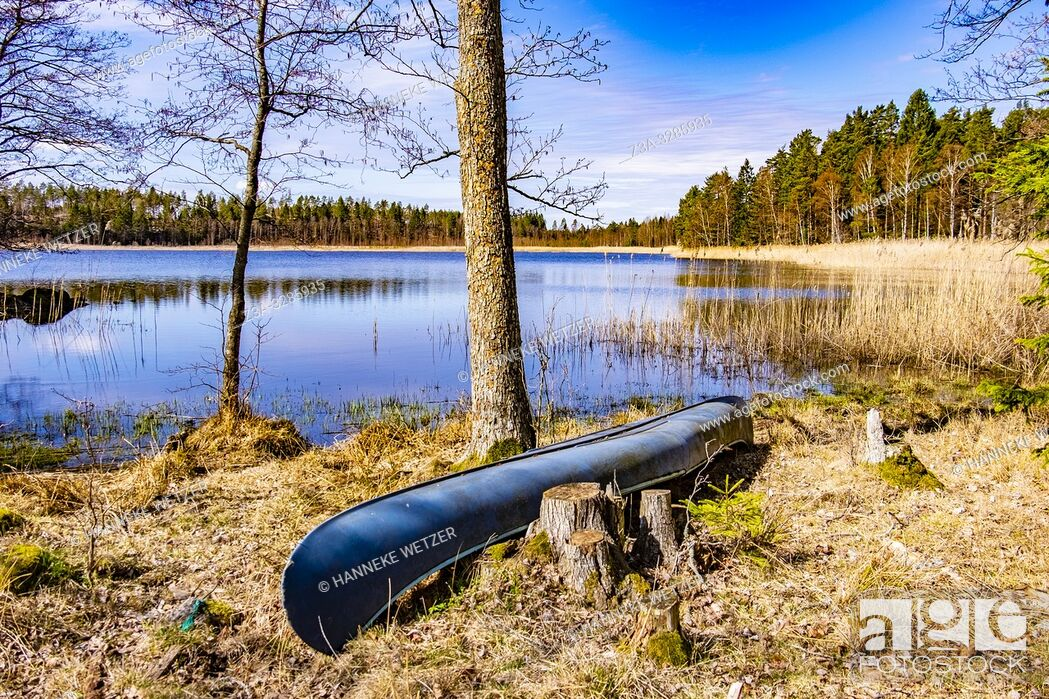 Imagen: Canoe in the forest of Sweden.