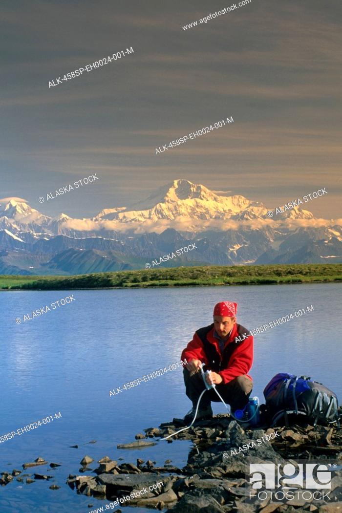 Photo de stock: Hiker Filtering Water from Pond Denali SP SC AK Summer.