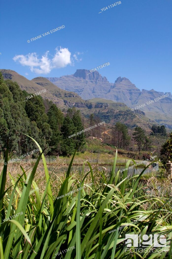 Stock Photo: View on to the Drakensberg mountains from the Champagne Castle resort  April 2009, fall  Drakensberg, Kwazulu-Natal, South Africa.