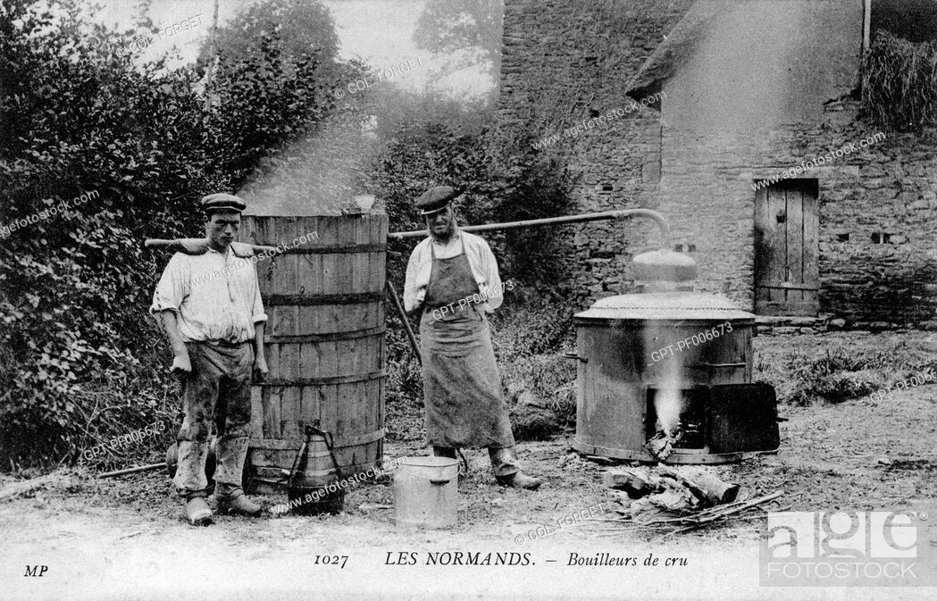 Stock Photo: GROWER-DISTILLERS IN NORMANDY.