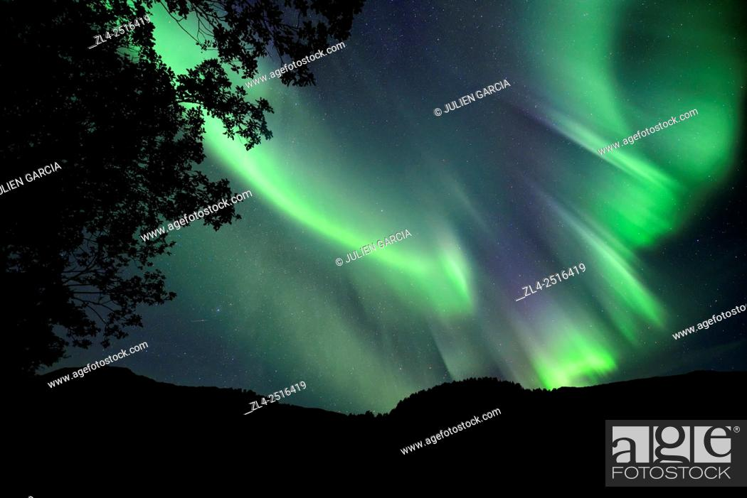 Stock Photo: Norway, Nordland, Lofoten islands, Vestvagoy island, northern lights (aurora borealis).