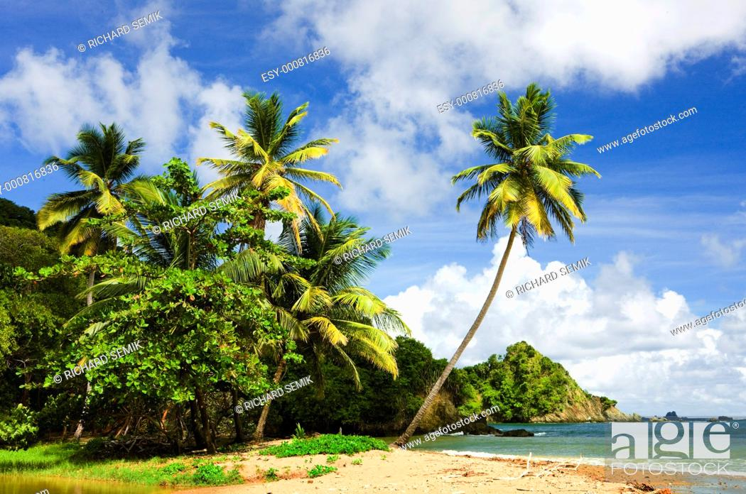 Stock Photo: Batteaux Bay, Tobago.