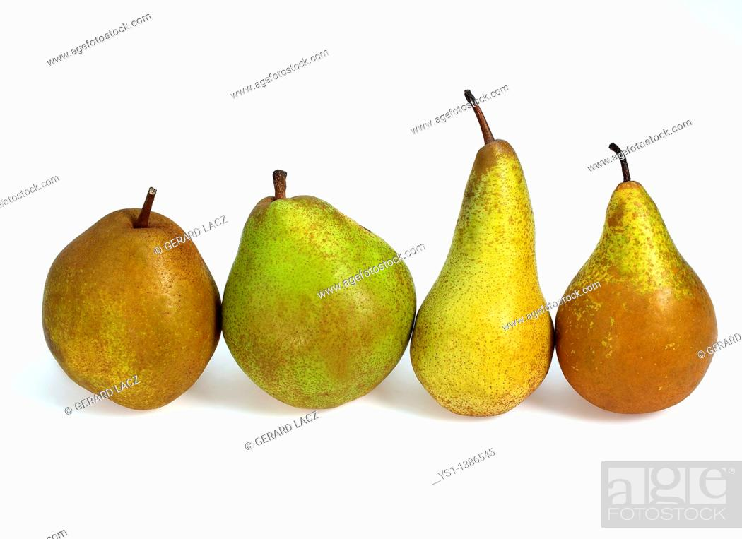 Stock Photo: Beurre Hardy, Conference, Comice et Williams Pears, pyrus communis, Fruits against White Background.