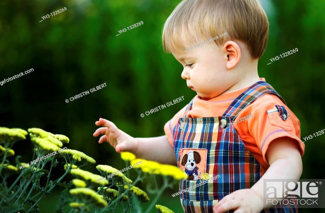 Stock Photo: Portrait of a toddler curiosly playing with flowers in the garden.