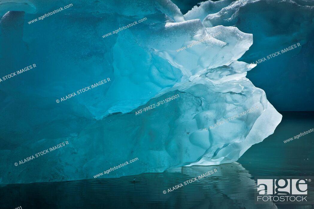 Stock Photo: Icebergs from McBride Glacier, Muir Inlet, Glacier Bay National Park & Preserve, Southeast Alaska, Summer.