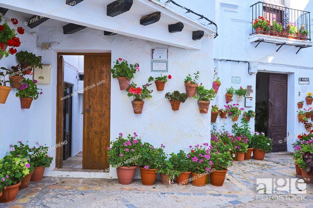 Stock Photo: Vejer de la Frontera. Costa de la Luz. White Town, Cadiz Province. Andalucia. Spain.