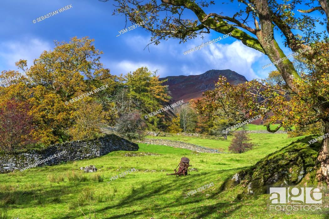 Stock Photo: Cumbrian Way from Skelwith Bridge to Elterwater, Lake District National Park, Cumbria, England, UK, Europe.