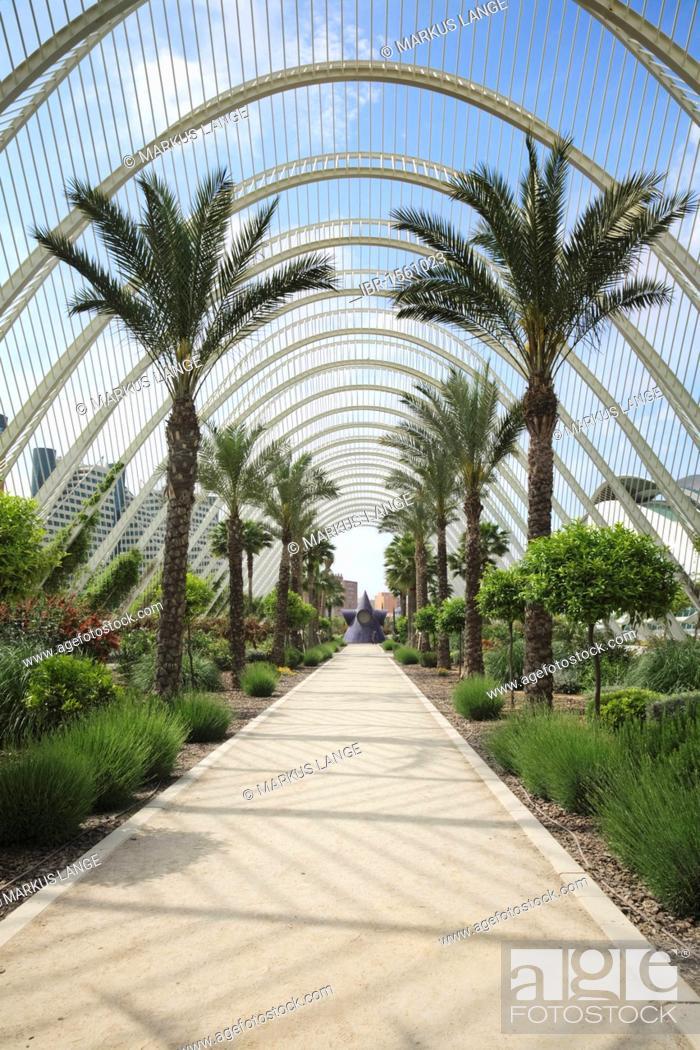L Umbracle Palm Garden Ciudad De Las Artes Y Las Ciencias