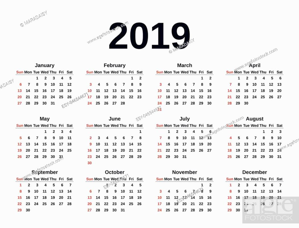 Stock Vector: Calendar 2019 in simple style. Week starts Sunday. Vector. Stationery 2019 year template in minimal design. Yearly calendar organizer for weeks.