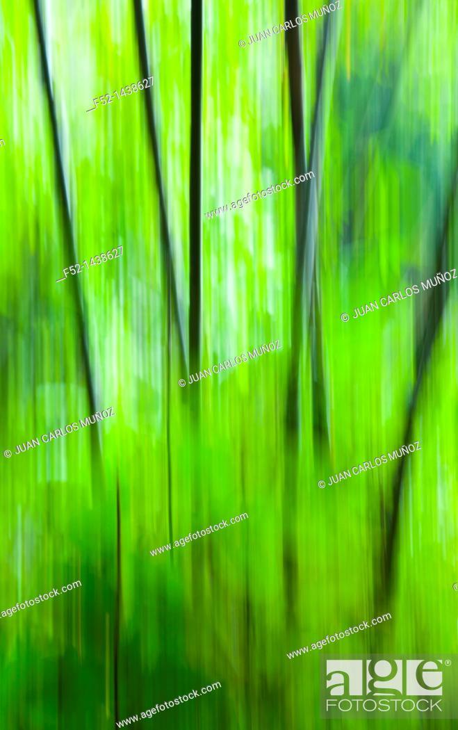 Stock Photo: Cheow Larn Lake  Khao Sok National Park  Suratthani Province, Thailand, Asia.