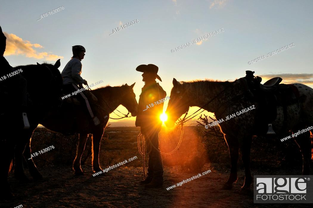 Stock Photo: Riders and their horses take in the sunset in the Sonoran Desert, Tucson, Arizona, USA.